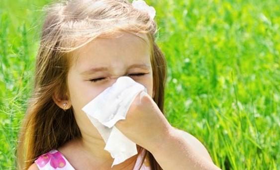 Scintilla, Terapie Naturali, allergie, intolleranze, allergie da polline, ipersensibilità,