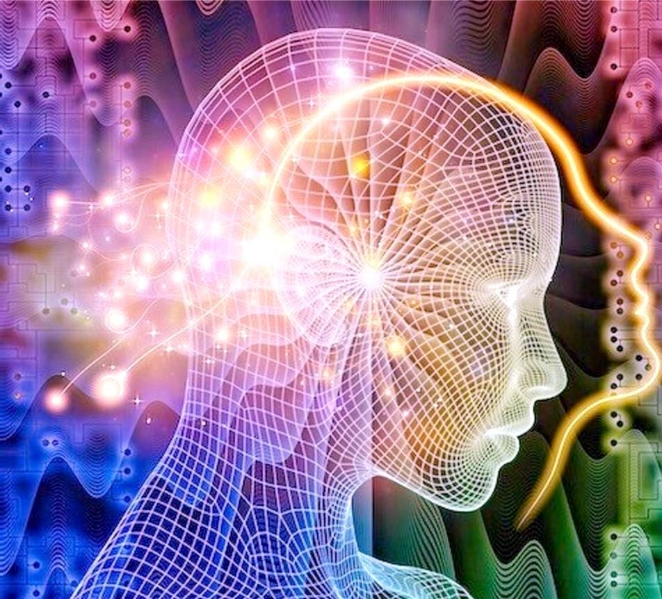 Scintilla, Seminario, Seminari, Webinar, Webinars Workshop, Corso, corsi, Sistemi di Credenze, neuroplasticità, epigenetica, circuiti neurali, mindfulness, Gordola, Locarno, Bellinzona, Ticino, Italia